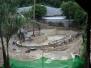 L Resort Pool