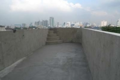 Roof top (4)-400